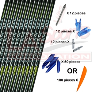 ACCURA X ONE PRIME CARBON ARROW SET WITH PIN NOCK